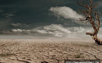 2020 Yılı Arazi Üzerinde Çalışanların Tazminatları